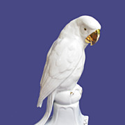 Early 1900's Grafenthal Parrot Figurine from Germany