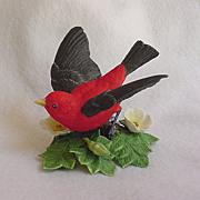 Lenox Scarlet Tanager