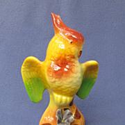 Colorful Royal Copley Cockatoo w/ Flower Figure