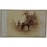 SALE Antique CDV Photograph ~ Horse With Large Wheeled Cart/Sulky