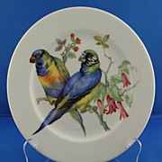 Carl Schumann Arzberg Bavaria Germany Bird Plate