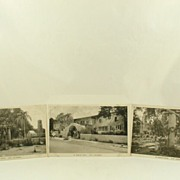 Real Photo Post Cards of El Roblar Hotel Ojai California by Albertype