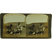 SALE Black Americana Stereoview of Rastus Copyright 1901