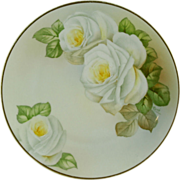 Tirschenreuth Bavaria Hand Painted and Signed Plate