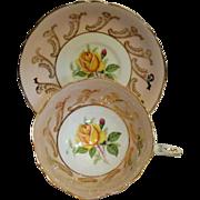 Paragon - Yellow Rose & Filigree - Teacup Set