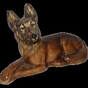 York China German Shepherd Dog Lying Down, Front Legs Crossed, And Very Watchful