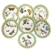 7 Wedgwood Majolica Pierced Plates - Birds Bugs Butterflies - Dated 1874