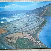 Vintage Postcard Redwood Highway