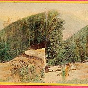 1865 The Glens Of The Catskills No. 4208 Stereophotography Stereoview