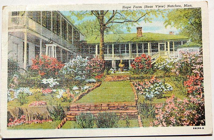 Hope Farm Natchez Mississippi Post Card