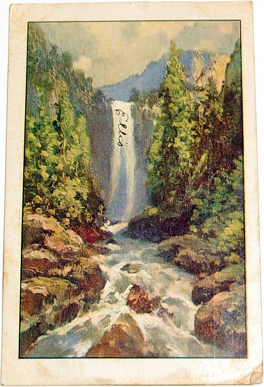 1907 Venal Falls--Yosemite Valley Postcard #225