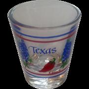 Vintage 1980's Texas Glass Jigger