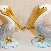 Big Billed Florida Pelicans Salt and Pepper Shakers