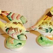 Beautiful Birds of Paradise Preening Salt and Pepper Shakers