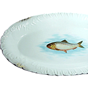 Outstanding Large Austrian FISH PLATTER by Bawo 'n Dotter w/ Embossed Border c.1898