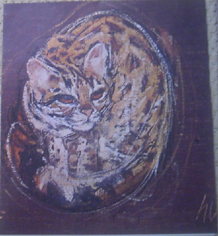 Cat LIthograph by HUG Swiss Artist 1960