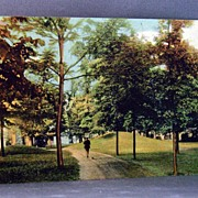 1909 Postcard Prehistoric Mounds City Park Waukesha Wisconsin