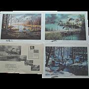 3 Ken Zylla Art Prints Commemorative North American Game Bird Series