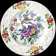 Early Pearlware Plate ~ ORNITHOLOGY Bird Bug Flowers c1810