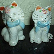 Twin Cat Shakers