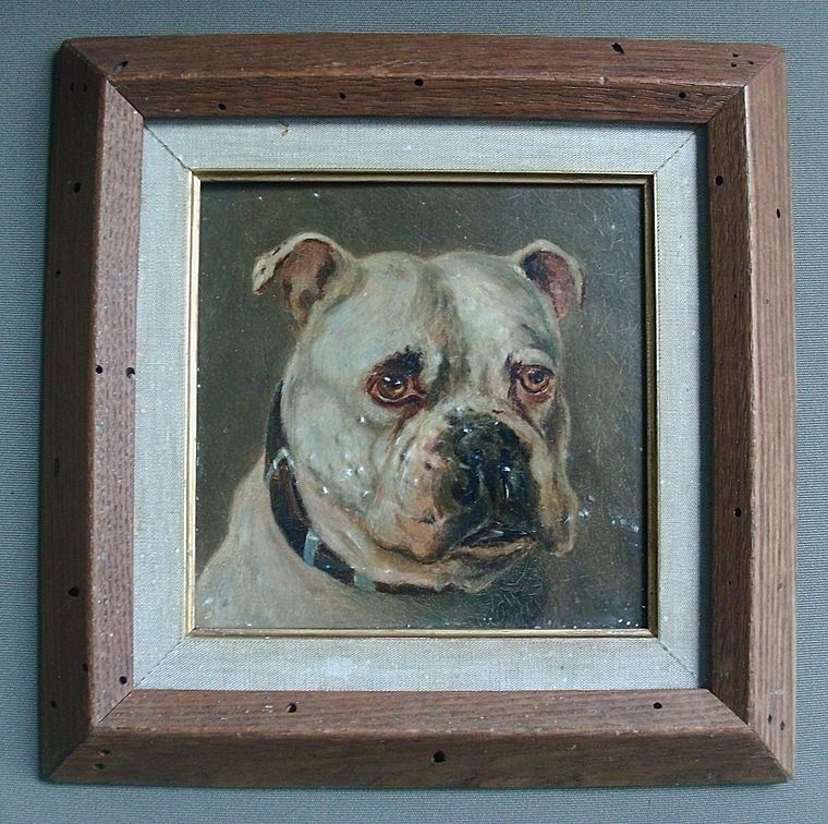 Set 3 19th century English Oil Paintings on Board - Portraits of Dogs