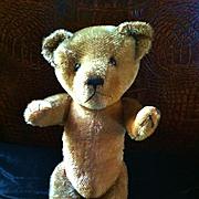 Antique Teddy Bear, Straw Stuffed