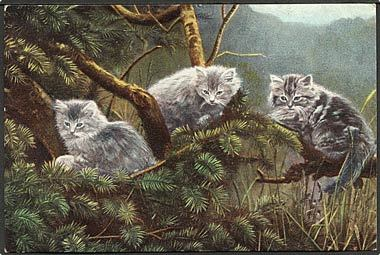 """Cats""  (1910')"