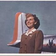 """Stewardess""  (1960')"