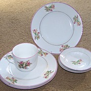 Early 6 Piece set of Haviland Limoges Moss Rose