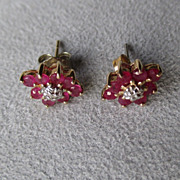 14k Gold and Ruby Earrings