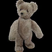 Schuco Yes No Teddy Bear Circa 1940s - 1950s