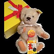Steiff Teddy Bear with Button Tags and Original Box