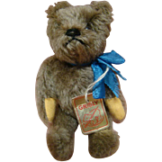 """6 Inch Tagged """"Grisly"""" Bear, West Germany, Fully Jtd, Excellent"""