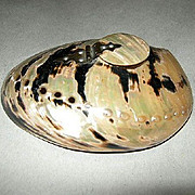 1800's Mother Of Pearl Abalone Ink Well