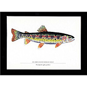 SALE Print Columbia River Redband Trout
