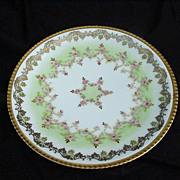 L S & S Limoges, France Porcelain Plate, Highly Decorative