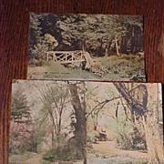 Three Hand Tinted Scenic Postcards