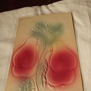 Raised Design 1900's Postcard
