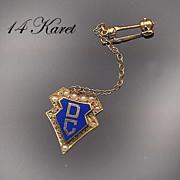 14K Gold Enamel & Seed Pearl DC Sorority Pin
