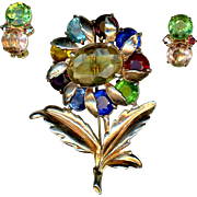 Multi-Colored Glass Rhinestone Flower Pin and Earrings