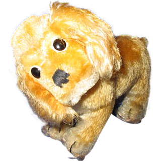 Wool Mohair Cocker Spaniel with glass button eyes