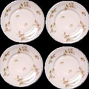 Haviland Floral Pink & Green Plate