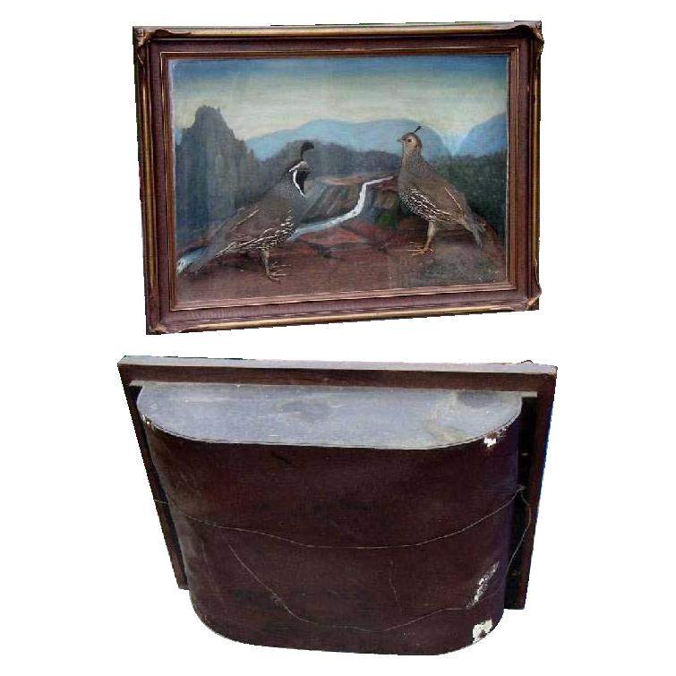 Antique Diorama Mountain Scene with 2 Mountain Quail