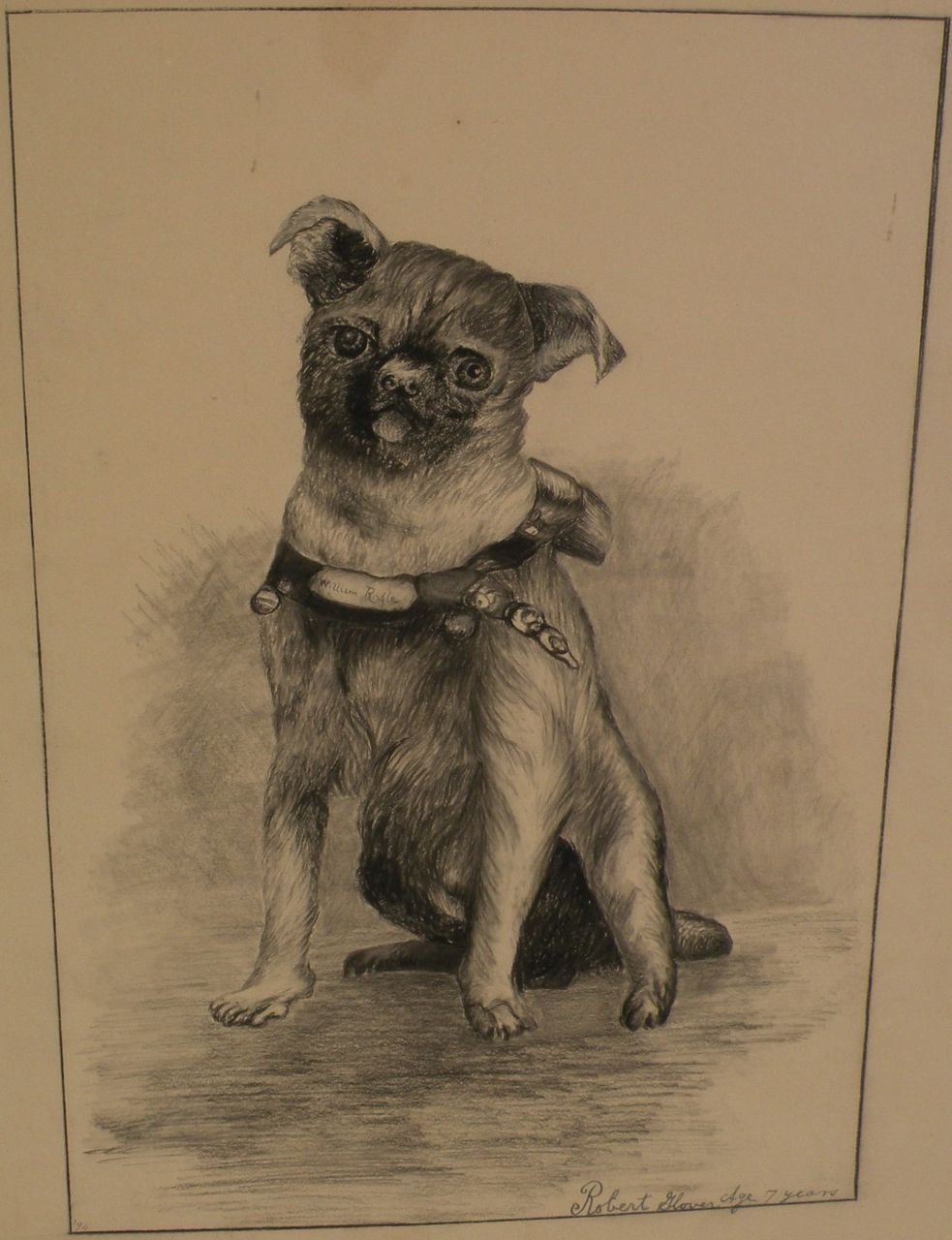 Dog art original English black ink drawing of a pug dated 1894