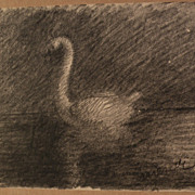 Argentine art circa 1950's signed pencil drawing of a swan