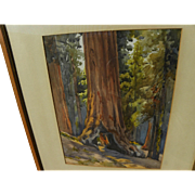 "California vintage plein air art watercolor painting of famous giant sequoia ""Tunnel Tree"" signed J. M. Stewart"