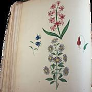 George Brookshaw 1816 Treatise Flower Painting Book with Plates