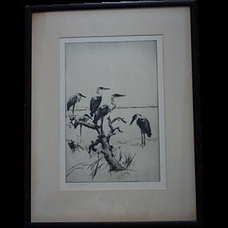 Frank Weston Benson Etching Herons Pencil Signed
