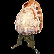SOLD Exotic Italian Cameo Helmet Shell Sculpture