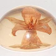Vintage Flower Lucite Paperweight